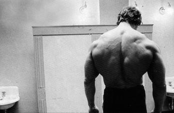 Arnold's Back